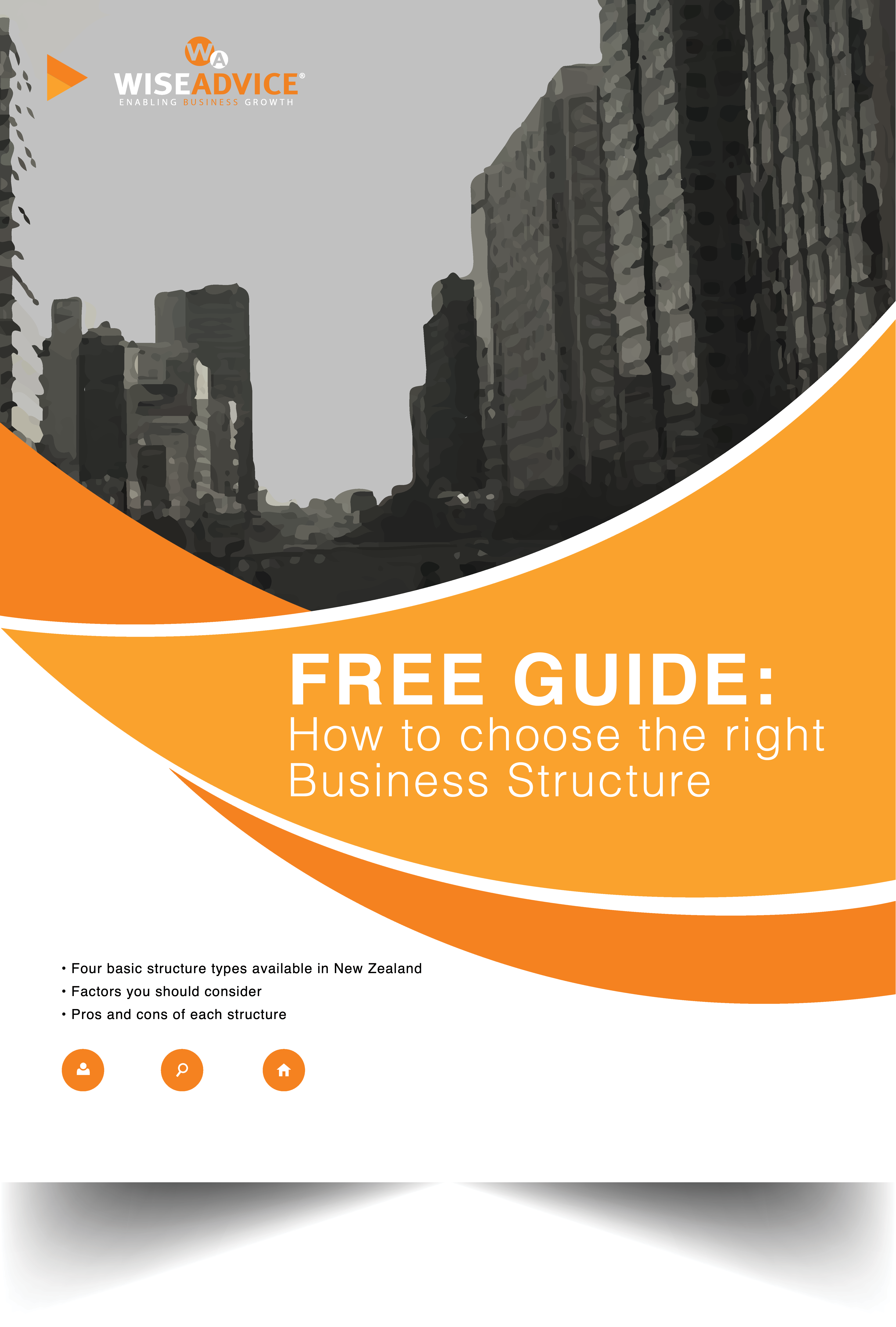 business structure guide